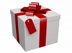 Healthy Holiday Gift Ideas - Primal Potential