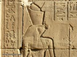 ... Relief of Horus at Edfu Temple ...