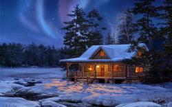 House forest artwork