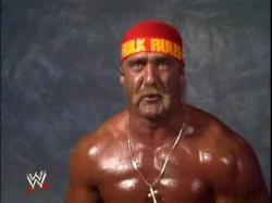 Hulk hogan. Published January 1, 2013 at 1024 × 768 ...