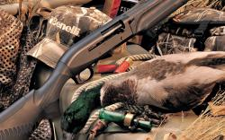 Duck Hunting Wallpaper 1