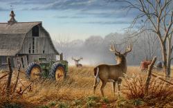 deer hunting background