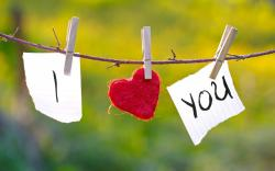 Images I Love You Hd Background Wallpaper 30 Thumb