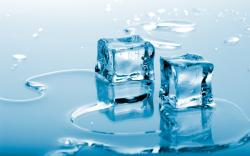 Ice. It's a personal matter. There are many sizes and shapes to satisfy your choice and has everything to do with the intended purpose.