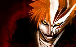 Bleach Anime hollow ichigo