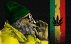 Jamaica ganja weed man