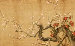 Japan Nature Wallpaper hd