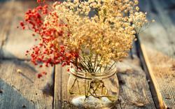 Flowers Jar HD Wallpaper