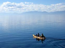 Kayak Rentals 1/2 day Single $40