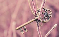 Frozen Twig Key Necklace HD Wallpaper