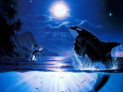 Desktop Wallpaper · Gallery · 3D-Art Killer whale dance