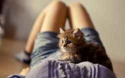 Girl Kitten Photo