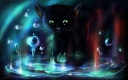 Kitten Water Bubbles Art