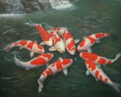 Download Koi Fish Hd Wallpaper 15359 Label: Download,Fish,hd,Koi .