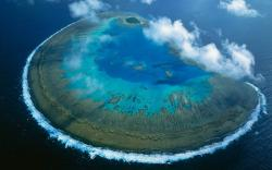 Lady musgrave island australia