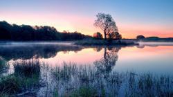 Morning Fog Over A Lake wallpaper