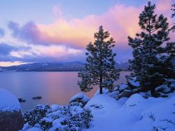 Tahoe Winter Picture