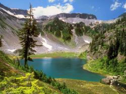 ... Lake-Wallpapers-Forest ...