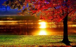 Lakeside sunset reflection