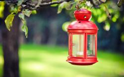 Lamp Lantern Red Candle Tree