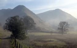 Landscape morning mist