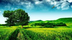 Hd Wallpaper Landscape Hd Widescreen 11 HD Wallpapers