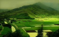 ... Landscape Wallpapers ...