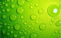 light green droplets abstract wallpaper Wallpaper
