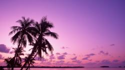 Desktop wallpapers Sunset on a tropical island.