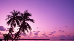 Desktop wallpapers Sunset on a tropical island.