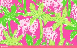 Lilly Pulitzer Wallpaper #6973 - Resolution 1280x800 px