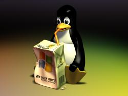 linux-anti-windows-wallpaper.jpg