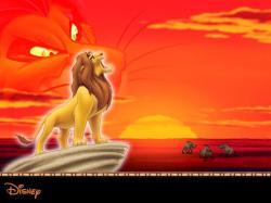 Lion King Wallpaper 495 1024x768 px