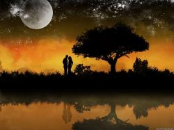 Love-Wallpaper-love-