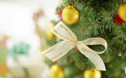 Lovely Christmas Close Up Wallpaper 39526 1680x1050 px
