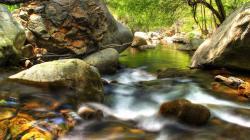Widescreen resolutions (16:10): 1280x800 1440x900 1680x1050 1920x1200. Normal resolutions: 1024x768 1280x1024. Wallpaper Tags: forest surf rocks creek
