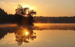 Lovely Morning Fog Wallpaper