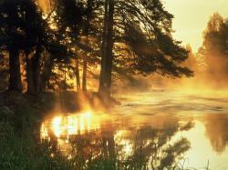 Lovely Sun Rays