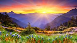 12 Beautiful HD Sunrise Wallpapers