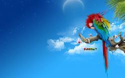 Macaw Parrot Wallpaper HD 17 For Desktop Background