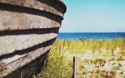 Macro Fence Beach Nature