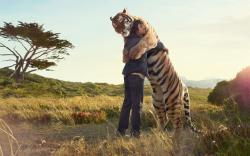 Man tiger hug