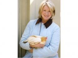 Martha Stewart Martha Stewart