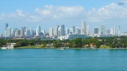 Miami Wallpaper