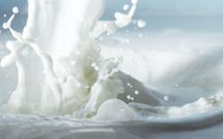 Milk Wallpaper