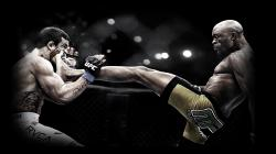 HD Wallpaper | Background ID:179041. 1920x1080 Sports Mma