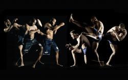 Sports - MMA Wallpaper