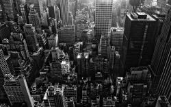 New York Modern Wallpapers Black and White