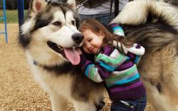 3840x2400 Wallpaper mood, children, girl, brunette, sweater, striped, dog,