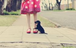 Mood Girl Pink Dress Polka Dots Puppy Photo HD Wallpaper